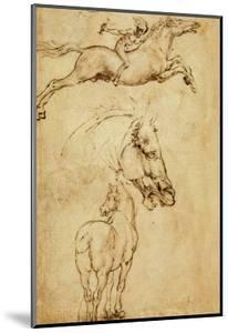 Sketch of a Horse by Leonardo da Vinci