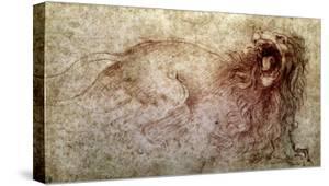 Sketch of a Roaring Lion by Leonardo da Vinci