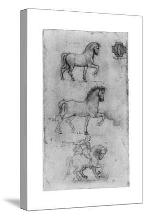 Studies for the Trivulzio Monument, C1508