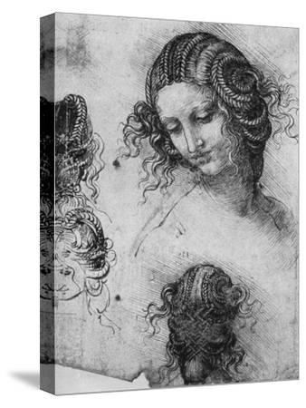 Study for the Head of Leda, 1503-1507