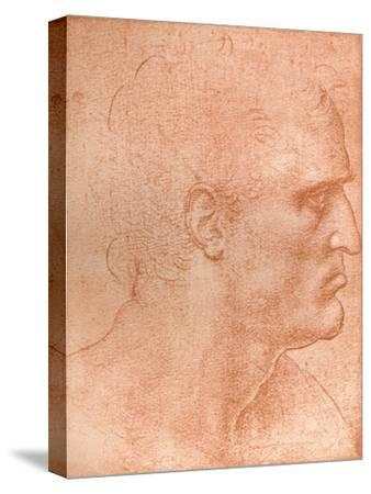 Study for the Head of St Matthew in the Last Supper, C1494-C1499 (1883)