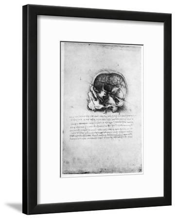 Study of a Human Skull, Late 15th or Early 16th Century