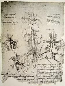 The Heart and the Circulation, Facsimile of the Windsor Book by Leonardo da Vinci
