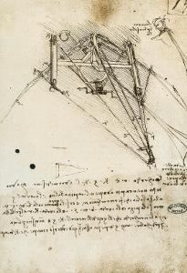 The Rudder of a Wing, Institut De France, Paris by Leonardo da Vinci