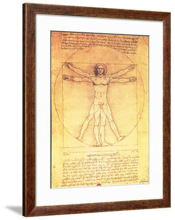 Vitruvian Man Proportions of the Human Figure