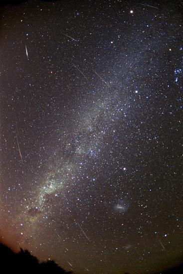 Leonid Meteors-Dr. Fred Espenak-Photographic Print