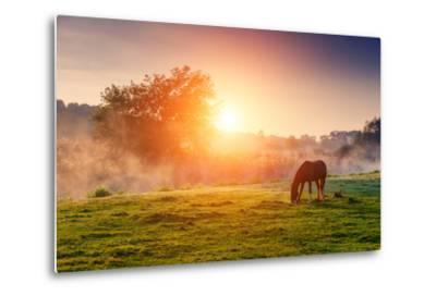Arabian Horses Grazing on Pasture at Sundown in Orange Sunny Beams. Dramatic Foggy Scene. Carpathia