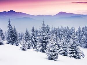 Fantastic Evening Winter Landscape by Leonid Tit