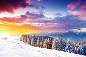 Fantastic Morning Mountain Landscape. Overcast Colorful Sky. Carpathian, Ukraine, Europe. Beauty Wo by Leonid Tit