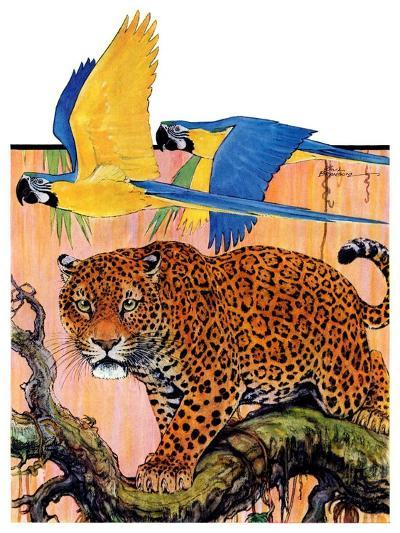 """Leopard and Parrots in Jungle,""September 2, 1933-Paul Bransom-Giclee Print"