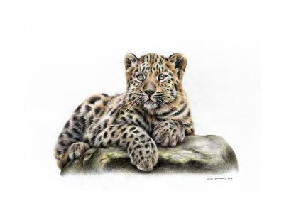 Leopard Cub-Sarah Stribbling-Art Print