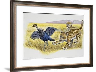 Leopard Cubs (Panthera Pardus)--Framed Giclee Print