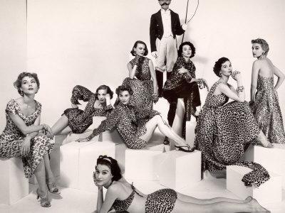 https://imgc.artprintimages.com/img/print/leopard-fabric-fashions_u-l-p3ncs90.jpg?p=0