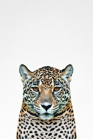 Leopard II-Tai Prints-Art Print