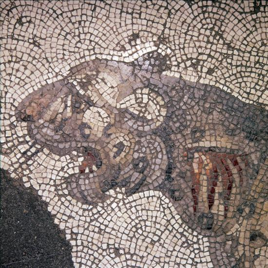 Leopard Mosaic detail, Great Palace, Istanbul, c4th-6th century-Unknown-Giclee Print
