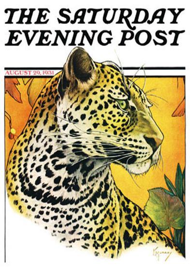 Leopard-Jack Murray-Art Print