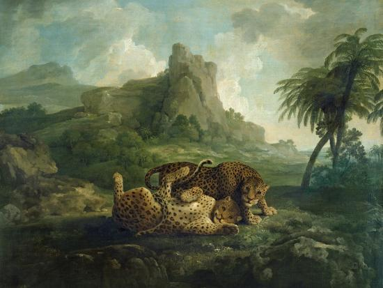Leopards at Play, c.1763-8-George Stubbs-Giclee Print