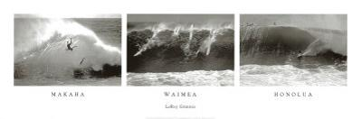 Makaha, Waimea, Honolua by Leroy Grannis