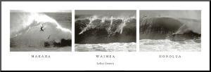Makaha, Waimea, Honolua by Leroy Grannis