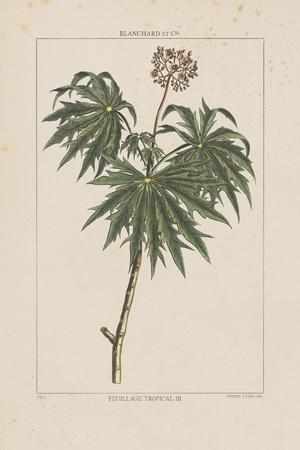 https://imgc.artprintimages.com/img/print/les-botaniques-iv_u-l-f7rlsb0.jpg?p=0
