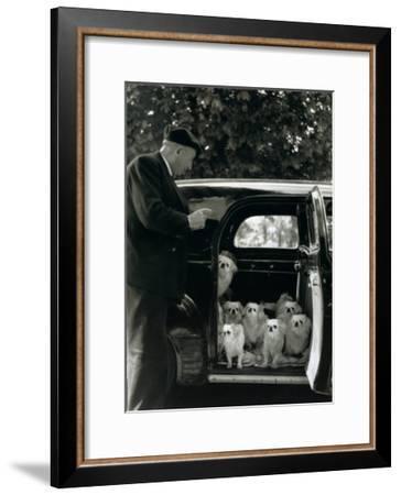 Les Chien du Marquis de Cuevas, Bois de Boulogne-Robert Doisneau-Framed Art Print