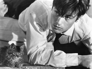 Les Felins Joy House by Rene Clement with Alain Delon, 1964 (b/w photo)