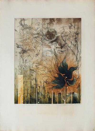 Les Oiseaux De La Tempête--Limited Edition