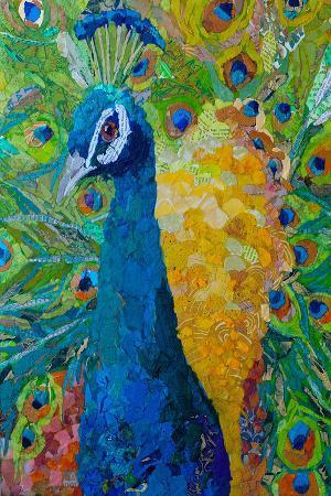 les-plumes