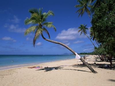Les Salines Beach, Near Sainte Anne, Martinique, Lesser Antilles-Yadid Levy-Photographic Print