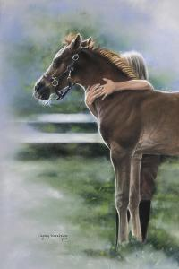 Emily and the Foal by Leslie Harrison