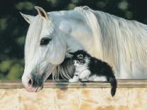 Emily and the Foal-Leslie Harrison-Art Print