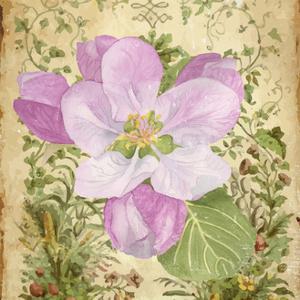 Vintage Apple Blossom II by Leslie Mark