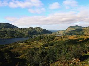 Landscape of Killarney National Park by Leslie Richard Jacobs