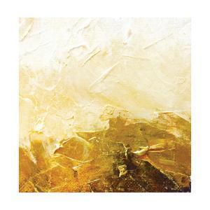 Golden Sunset by Leslie Saeta