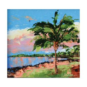Hawaiin Sunset Reflections by Leslie Saeta