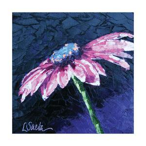 Pretty and Pink by Leslie Saeta