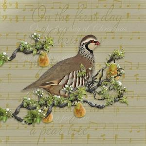 Partridge in a Pear Tree by Leslie Wing
