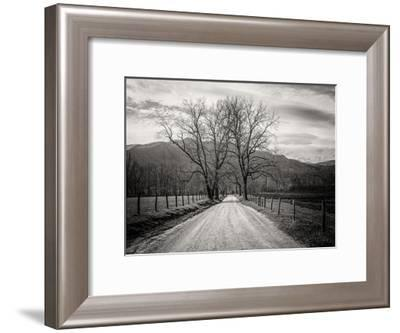 Less Traveled-Glenn Taylor-Framed Art Print
