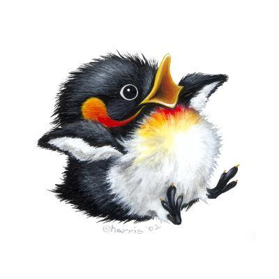 Let it Snow - Penguin-Peggy Harris-Giclee Print