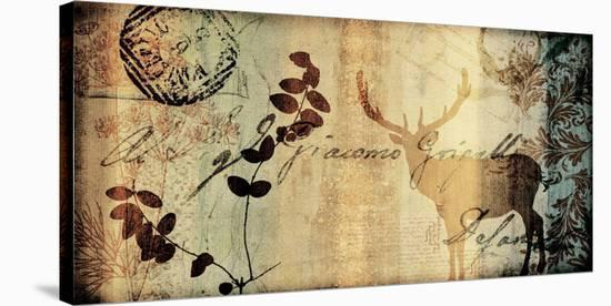 Letter II-Fernando Leal-Stretched Canvas Print