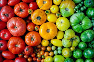 Fresh Heirloom Tomatoes Background, Organic Produce at a Farmer's Market. Tomatoes Rainbow.