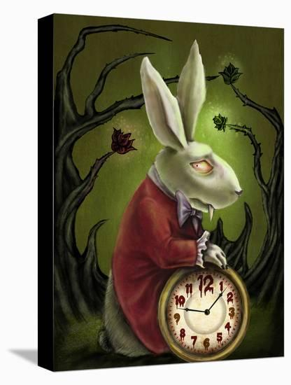 Levin White Rabbit-Diana Levin-Stretched Canvas Print