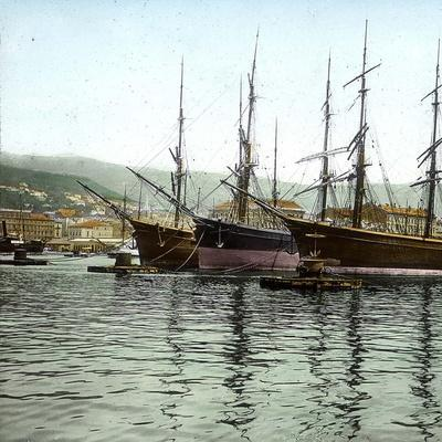 Trieste (Italy), the Port Seen from St, Charles' Jetty, Circa 18905