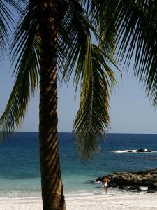 Montezuma Beach, Nicoya Peninsula, Costa Rica, Central America by Levy Yadid