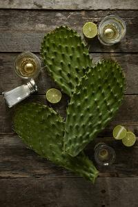 Nopales and Tequila by Lew Robertson