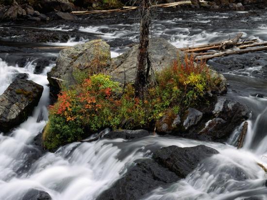 Lewis Falls, Yellowstone Np, Wyoming-Jeff Foott-Photographic Print