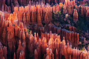Bryce Canyon at Sunset by Li Austin