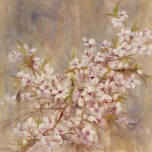 Cherry Blossom I by li bo