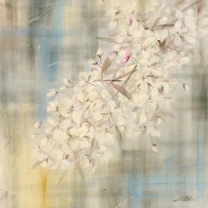 White Cherry Blossom II by li bo