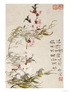 Willow and Peach Blossoms by Li Shan